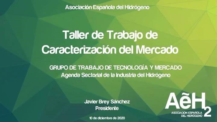 Celebrado el primer Taller de Trabajo sobre Caracterización del Mercado, en el marco de la elaboración de la Agenda Sectorial de la Industria del Hidrógeno