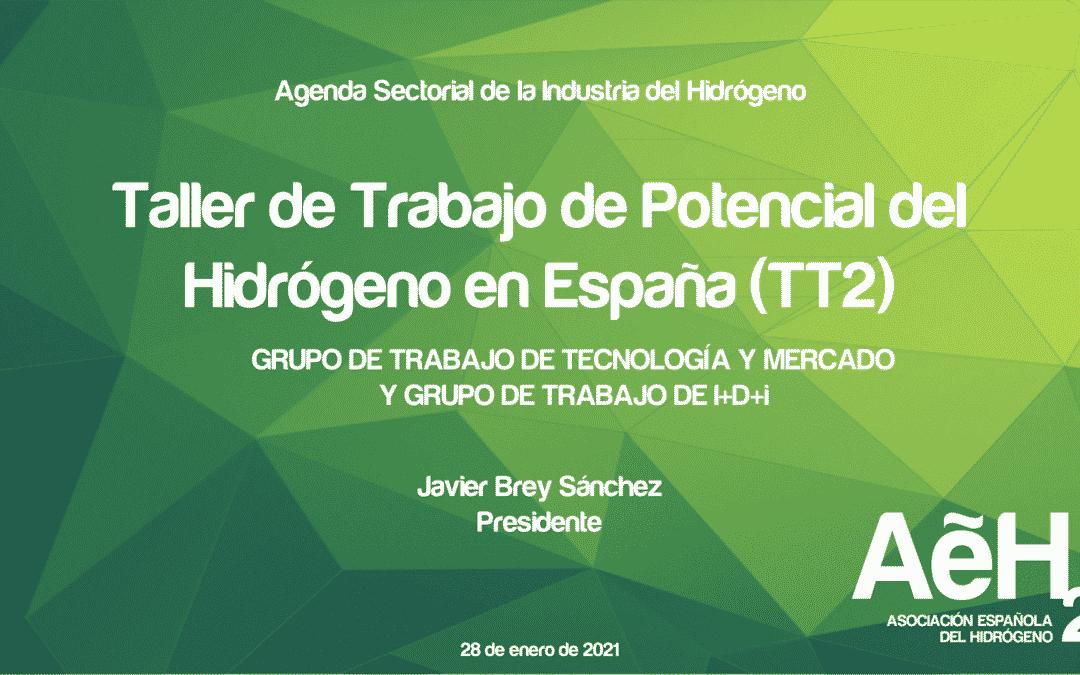 """Celebrado el Segundo Taller de Trabajo """"Potencial del Hidrógeno en España"""", en el marco de la elaboración de la Agenda Sectorial de la Industria del Hidrógeno"""