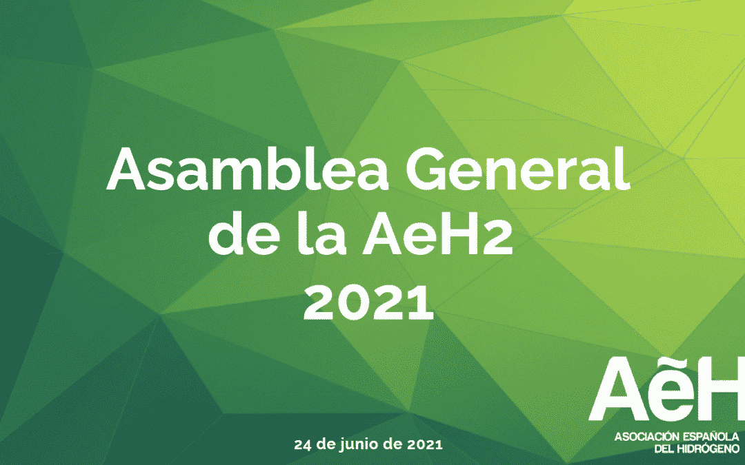 Celebrada la Asamblea General anual de la AeH2 2021
