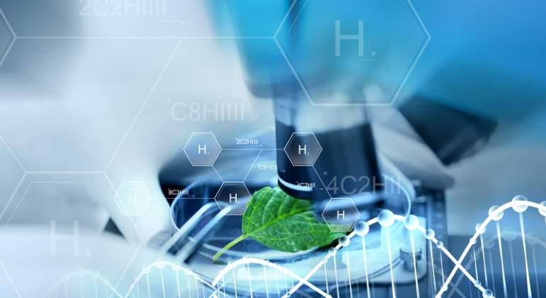 Plazos más exigentes para el hidrógeno